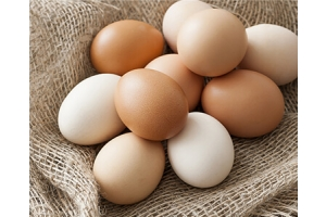 Fresh Eggs Caroline In Australia Villages